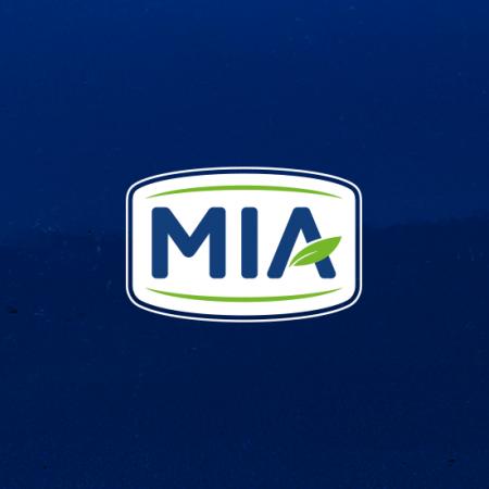 Logotyp elaboration